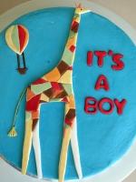 BoyGiraffe