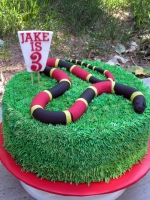 JakeSnakeCake