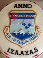 AirNationalGuard-closeup